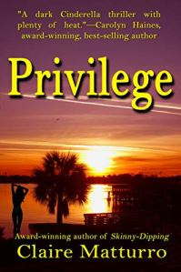 Privilege by Claire Matturro - Book Cover, palm trees by water at sunset